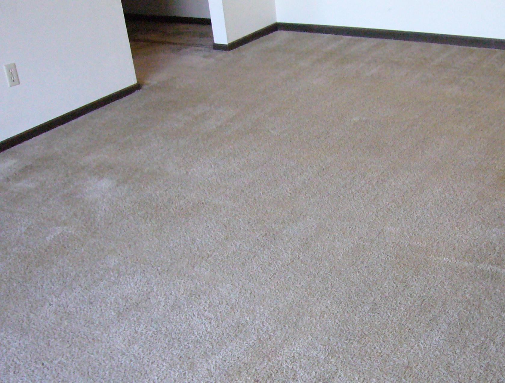 How To Clean Heavily Soiled Carpet Mycoffeepot Org