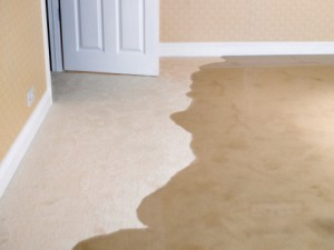 How-to-Deal-with-Carpet-Water-Damage-in-Your-Home